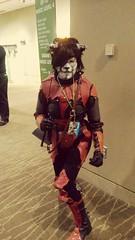 Dark Brotherhood Khajiit (Black Rose Bride) Tags: theelderscrolls skyrim darkbrotherhood khajiit cosplay videogames