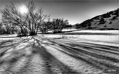 Ombre lunghe (Luigi Alesi) Tags: sanvicino italia italy marche macerata san severino riserva naturale del montye vicino e canfaito ombre shadows tramonto sunset sole sun raggi rays paesaggio landscape scenery natura nature bianco nero black white bn bw nikon d750 raw