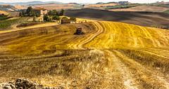 Down on the farm. (AlbOst) Tags: italy farmhouse farmland tuscany fields paths dappled combineharvester italianlandscapes farmroads