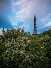 Lyon - Passerelle des Quatre-Vents (y.caradec) Tags: france lumix europe lyon septembre passerelle 2015 rhnealpes quatrevents gx7 passerelledesquatrevents onlylyon dmcgx7 lumixgx7 septembre2015