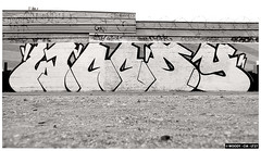 Woody CIA LT27 - 2015 (woodycia) Tags: street paris france art graffiti cia woody graff lt27