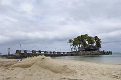 Sand crocodile (1Nine8Four) Tags: fiji polynesia pacific sony south pointandshoot warwick rx100ii sonyrx100ii