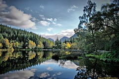Glencoe, Scotland. (Raymund McGrath Landscapes) Tags: trees mountains nature water landscape scotland highlands glencoe firs