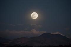 Salida de la luna (José M. Arboleda) Tags: astronomia astronomy luna moon eclipse cielo popayán eos josémarboledac nwn sp150600mmf563divcusda011 tamron markiii canon colombia 5d