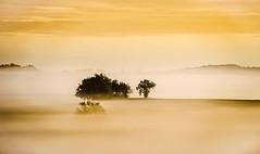 Frilosité automnale (Fabrice Le Coq) Tags: jaune automne soleil hiver vert ciel nuage nuages paysage soir campagne matin fabricelecoq
