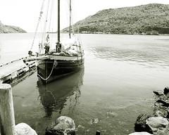 Leenan Head (wespfoto) Tags: canada vintage newfoundland wooden harbour stjohns logger hull narrows ketch sailingvessel leenanhead