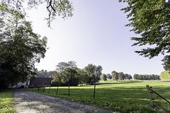 IMG_2932-Modifier (mycenium) Tags: panorama belgium belgique farm bow land prairie chateau region campagne brabant ferme bois vache wallon wallonie grez grezdoiceau laurensart wallone doiceau