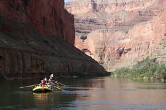 Grand Canyon 2015 566