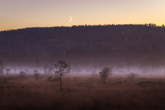 Misty mire (PixPep) Tags: trees sunset sky moon sweden outdoor swedish hills mire arvika mires koppom