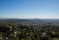 View from griffith observatory to Down town Los Angeles (Raf Debruyne) Tags: california usa canon landscape eos losangeles downtown 5d mk3 mark3 24105mm 24105mmf4 canonef24105mmf4lusm canon24105mmf4 5dmkiii 5dmarkiii canoneos5dmk3 rafdebruyne debruynerafphotography debruyneraf canoneos5dmkill