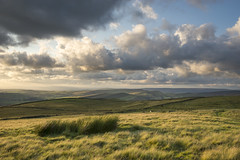 Soft summer moorland (Keartona) Tags: summer england sky landscape soft derbyshire peakdistrict july hills moors grasses moorland chinley