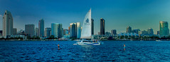 "San Diego slyline  ""Explored"" and giving thanks! (sharp shooter2011) Tags: boats sandiego sandiegoskyline cityskylines canon7d"