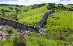 The Wall of Waiau (katepedley) Tags: fault thrust oblique leftlateral sinistral rupture scarp geology tectonics newzealand new zealand waiau kaikoura quake earthquake southisland south island university canterbury canterburynz leader canon 5d 1740mm polariser