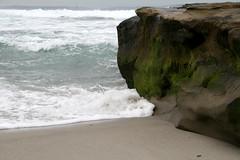 (wmpe2000) Tags: 2016 daytrip lajollacovetidepools tidepools lajolla ocean pacific waves surf wavecutplatform sandstone algae geology