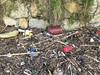 2016-01-24 17 28 38 (Pepe Fernández) Tags: contaminación bolsas plástico basura playa madorra nigrán ecología