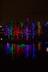 121016-9 (kara_muse) Tags: christmaslights vitruvianpark