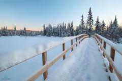 Sentier enneigé (Maxime Legare-Vezina) Tags: landscape paysage nature winter hiver neige snow sunrise forest canon quebec canada