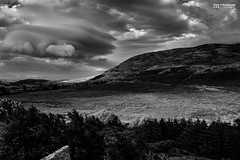 Movement (Paul T McDowell Photography) Tags: 2016 blackandwhite blackandwhitephotography camera canonef35mmf2isusm canoneos5dmarkii cloudy colour countydown day digital field fineartphotography fofannydamreservoir forest glen grass hiking horizontal image landscape landscapephotographer lens mountain mournemountains nature northernireland orientation outdoor paultmcdowellphotography photography places rock season sky slievemeelmoremountain summer time unitedkingdom weather year