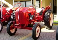 Porsche Standard Diesel (samestorici) Tags: trattoredepoca oldtimertraktor tractorvintage tracteurantique trattoristorici oldtractor