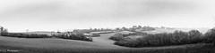 20161231Brouillard-6 (loflol) Tags: coteaux brouillard brume ancien grain