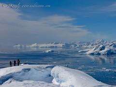 Crevasses on Top of Nansen Island peak