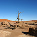 DSC02830 - Namibia 2010 Sossusvlei