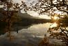 Oregon (Sigma 12-24mm F4 Art) (Patrick Santucci Photography) Tags: sigma1224mmart sigma1224mmf4art sigma1224art sigmaart wideangle zoom landscape starburst oregon landscapephotography dslr 1224mm sigmalenses lens columbiarivergorge nature sunset
