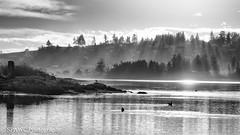 Esquimalt Lagoon (spawc) Tags: esquimaltlagoon monochromatic beach landscape coastal esquimalt blackwhite outdoor bw britishcolumbia clouds seascapes colwood canada ca