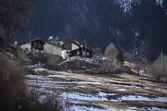 Bémont d'en-bas (bulbocode909) Tags: valais suisse bémont villages maisons chalets montagnes nature hiver arbres forêts neige lesvalettes bovernier