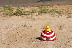 The Rubber Duck Daredevil Squadron Braves the Quicksand Shoals of Puget Sound (Studio d'Xavier) Tags: 365 quicksand outoftheordinary werehere 234365 therubberduckdaredevilsquadron quicksandshoals august222015