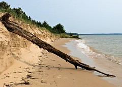 Along the Shore (B2 Photography) Tags: summer lake tree water up waves michigan dune shoreline lakemichigan erosion sanddune