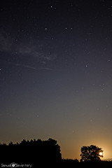 * Marchand de sable * (samuel.devantery) Tags: wood longexposure nightphotography camping trees moon nature field night clouds forest dark stars star switzerland long exposure peace nightscape darkness natural swiss peaceful moonlight quite exploration