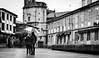 Sta. María (amargureiro) Tags: street city blackandwhite bw blancoynegro church umbrella cityscape galicia rainy oldtown pontevedra 50mmf18af