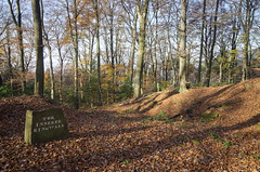 Heiligenberg Fortress (Rich3012) Tags: autumn trees fall forest germany deutschland woods iron fort age heidelberg badenwrttemberg heiligenberg