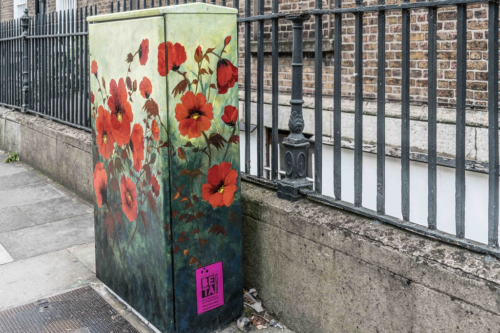 POPPY CORNER BY DONNA MC GEE [Fitzwilliam Street - Merrion Square South] REF-10805494
