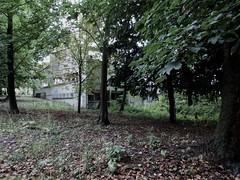 Serie - Abandoned II (Nicolas) Tags: old building architecture outdoor zombie ruin scene ruine horror series batiment dcor abandonn thewalkingdead nicolasthomas