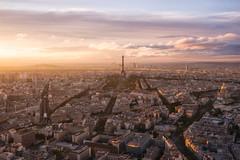 Paris Glow