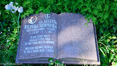 (Kenneth Gerlach) Tags: denmark outdoor dk titel warsawa hellerup kirkegrd gravsten gravsted gravplads capitalregionofdenmark hjesteretsdommer erhvervtitel