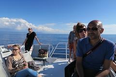 Navetta Delfino, Grotte di Nettuno (Myriam Bardino) Tags: sardegna alghero grottedinettuno rivieradelcorallo navettadelfino