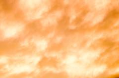 DSC_8673 (louis_mancuso) Tags: blue winter sunset field geese twilight corn cornfield pennsylvania farm goose pa newtown goldenhour yardley newtownpa flyingsouth newtownpennsylvania geeseflyingsouth shadybrookfarm yardleypa yardleypennsylvania winter2015 shadybrookfarmyardleypa shadybrookfarmyardley gooseflyingsouth
