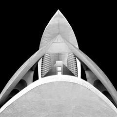 Straight up (Arni J.M.) Tags: roof shadow sky blackandwhite bw building valencia up architecture spain symmetry calatrava curve santiagocalatrava straightup cityofartsandsciences palaudelesartsreinasofia