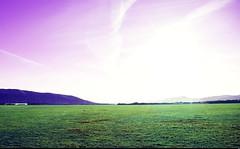 Les hauteurs de Saint-Auban (4) (Sebmanstar) Tags: travel light france color nature digital french landscape photography europa europe pentax explore paysage campagne couleur ballade aerodrome hauteur exterieur saintauban provencealpesctedazur