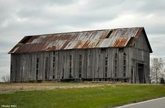 Farm Town, USA (Jake (Studio 9265)) Tags: wood usa metal barn america rust farm kentucky ky weathered agriculture shelbyville 2012