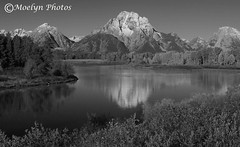 Oxbow Bend Black and White-Wyoming (moelynphotos) Tags: blackandwhite mountains nature reflections snowcapped snakeriver mountmoran nationalparks oxbowbend moelynphotos