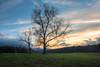 Father and Son (Ray Palmer Photography) Tags: autumn cadescove fall greatsmokymountainnationalpark nationalpark tn tennessee landscape nature fields sunset