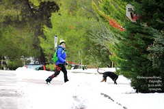 Today street photography in my city (philos from Athens) Tags: parnitha thrakomakedones athens attica snow skier picmonkey