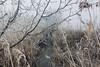 Walking talking: deep sleep (verblickt) Tags: landscape farmland cold frozen winter channel straw austria aut