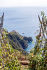 IMG_5925 (Eric.Burniche) Tags: cinqueterre cinqueterreitaly italy italia italyeurope riomaggioreitaly riomaggiore riomaggioreitalia vernassa vernazza corniglia cornigiliaitaly hiking manaroloa manarolaitalia manarolaitaly monterossoalmare laspezia liguria liguriansea sea ocean cliffs nature coast trail