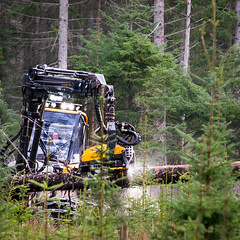 rural industry in Scotland (grahamrobb888) Tags: nikon nikond800 afnikkor80200mm128ed birnamwood perthshire scotland forest industry