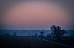 Winter gloaming (MsFerret_Art) Tags: winter nikon nikond5100 d5100 eveninglight light sunburn silverband evening winterlight abendlicht abenddämmerung gloaming dusk twilight wintertwilight dämmerung